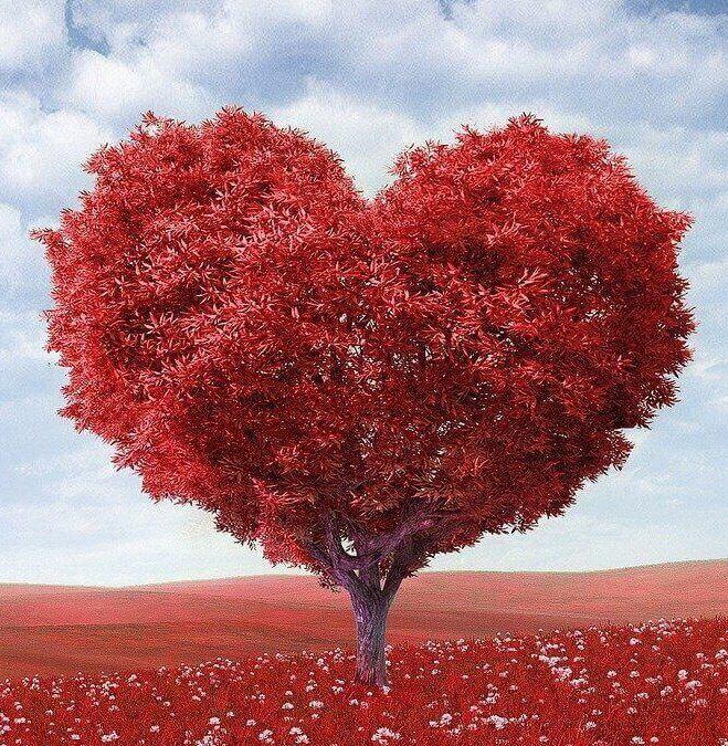 Herzbaum als Symbol zur Reflexion in der Beziehung